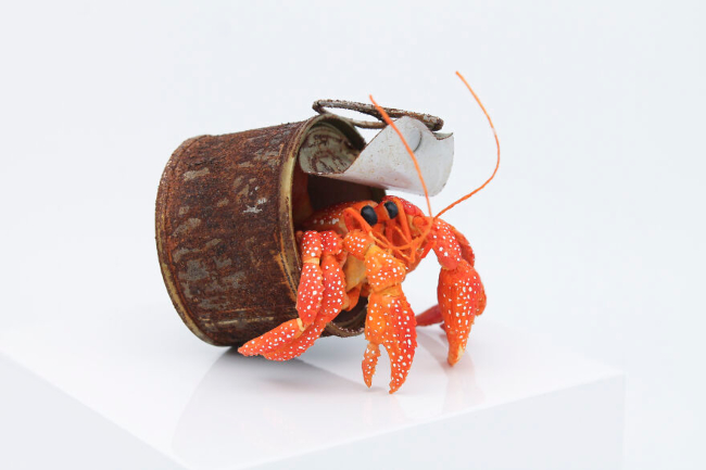 Skulpture koje podižu svest o zagađenju u morima i okeanima
